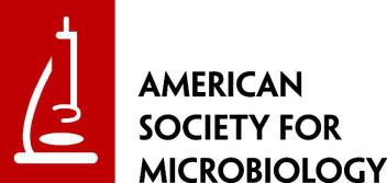 American Society for Microbiology Travel Grant